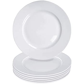 Alt-Gt 10.5 inch Porcelain Dinner Plates Set of 6,Breakfast Lunch Dinner Plates for Bread,Pasta,Dessert,Salad,Sandwiches,Raw Veggies,Sushi,Steak,White