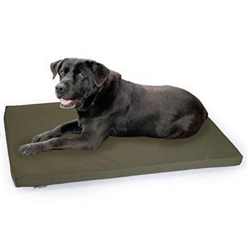 Chile alfombrilla de perro resistente al agua caja de perro de oliva: Amazon.es: Productos para mascotas