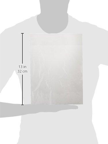 "100 - 9 x 12"" Poly Clear Plastic T-Shirt / Apparel Bags 1 Mil 2"" Back Flap Lock"