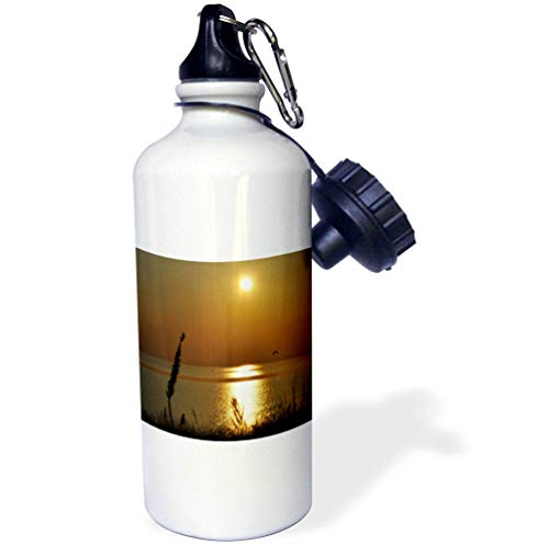 3dRose Dreamscapes by Leslie - Scenery - Summer Sunset Over Lake Michigan, Sun Reflection on The Water - 21 oz Sports Water Bottle (wb_292231_1) by 3dRose