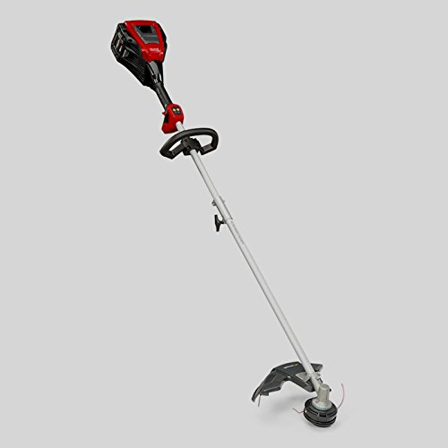 Weed Battery Lithium Ion Cordless Grass Garden Cutter String Trimmer 82 Volt Max Professional Tool Machine Gardening Tools - Skroutz by Skroutz