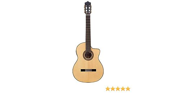 Guitarra Flamenca Martinez MFG-AS EF - EQ Fishman PSY-301: Amazon.es: Instrumentos musicales