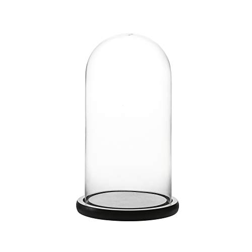 Whole Housewares Decorative Clear Glass Dome with Black MDF Base/Tabletop Centerpiece Cloche Bell Jar Display Case.Overall Size: D 5.7X H10.4