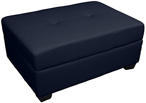 Epic Furnishings Leather Look Upholstered Tufted Padded Hinged Storage Ottoman Bench, 36 by 24 by 28