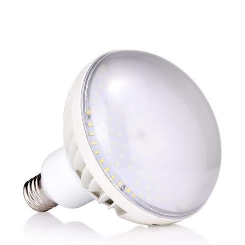 60本 驚き輝度12500lm、80W LED、1000W型、バラストレス水銀灯LEDランプ、100V/200V、 HF1000X、パナスーパー水銀灯800w~1000W形代替用LED、IP66防水、屋外用LED照明、E39/PAR56/LED/80W/昼白色5000K B07RL4FPMV