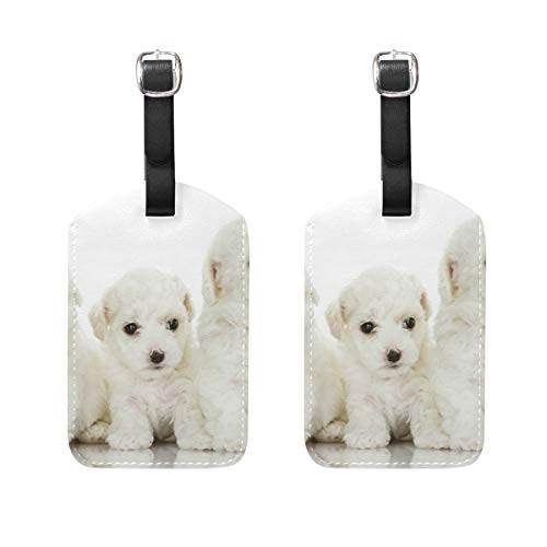 Luggage Tags Bichon Frise Dogs Mens Tag Holder Kids Bag Labels Traveling Accessories Set of 2 (Frise Bichon Leather Tag Luggage)
