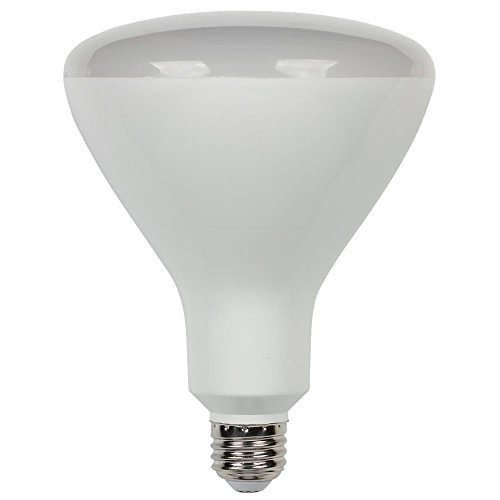 Dimmable Led R40 Flood Lights in US - 7