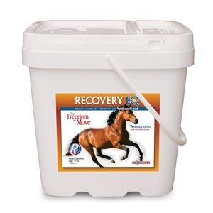 Recovery EQ HA for Horses (5 kg) by Biomedica Labs