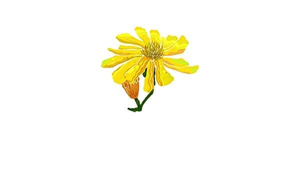6 pcs 21.5x18.7 CM Pintado a mano Amarillo Margarita Arte clásico ...