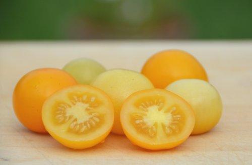 snow white tomato seeds - 3