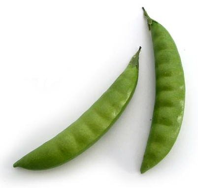 Artificial Pea Pods, Bag of 48, 2 Sizes
