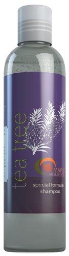 Tea Tree Oil Shampoo modérée pellicules avec Bio Lavande & Romarin - Traitement naturel pour imperfections de la peau - hommes, femmes et adolescents - aide à la circulation sanguine et stimule le renouvellement cellulaire - 100% Garantie de remboursement