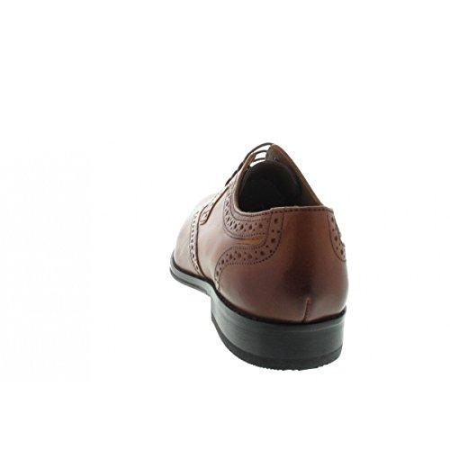À Lacets Salamander Pour Ville Chaussures De Homme I88wxtvPq