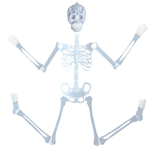 Yezijin 35cm Luminous Skull Skeleton Body Scary Halloween Toy Haunted House Tricky PropU -