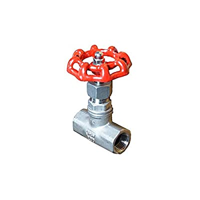 "1""NPT Globe Valve Stainless Steel 316 200PSI from ADDISON FLUIDS"