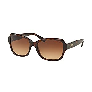 Coach Women HC8160 Sunglasses