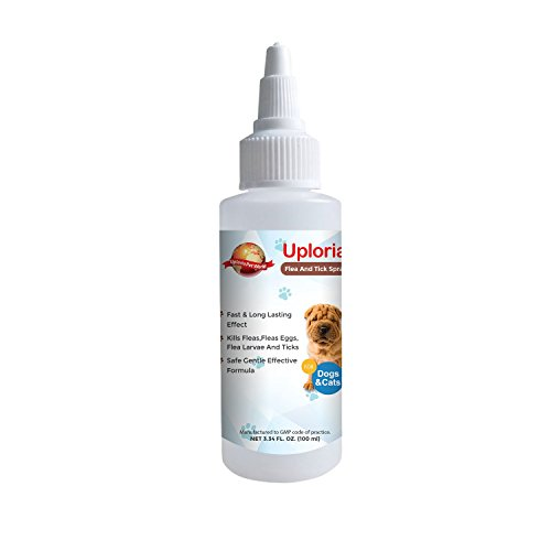 Pet Flea Tick And Mite Spray For Dogs Cats | Mites Treatment Cat And Dogs...