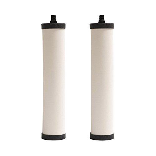 Franke FRX02 Undersink Water Filtration Filter for FRCNSTR, Chlorine (Pack of 2)