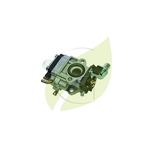 Carburador adaptable Asia Import modelo 26 - 33 ccm: Amazon.es ...