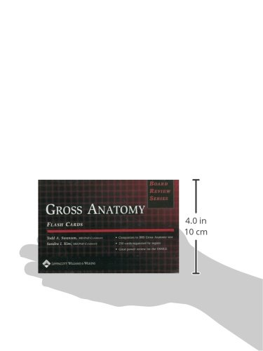Brs Gross Anatomy Flash Cards Board Review Series Amazon