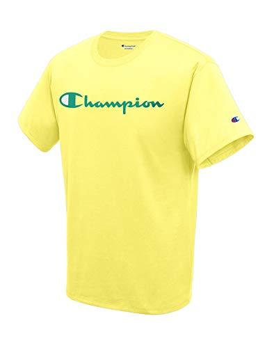 Champion Men's Classic Graphic TEE, Journey