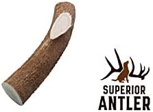 1-X Large Antler, Whole, Single Pack – XL All Natural Premium Grade A. Antler Chew. Naturally Shed, Hand-Picked, and Made in The USA. NO Odor, NO Mess. Guaranteed Satisfaction. for Dogs 45-90 Lbs