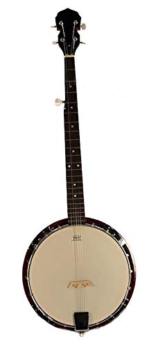 5-String BANJO - REMO Head 38