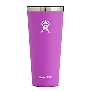 Hydro Flask 32 oz Double Wall Vacuum Insulated Stainless Steel Travel Tumbler Cup with BPA Free Press-In Lid, Raspberry