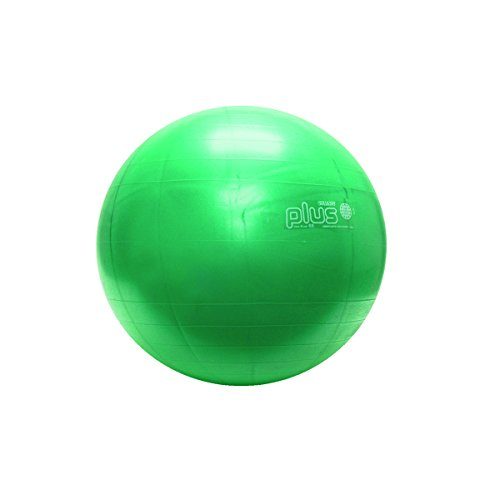 Physiogymnic Ball (FEI 30-1702 Physiogymnic Molded Inflatable Ball, 26