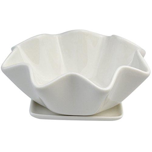 cnomg Ceramic Succulents Planter, Succulents Pots Bowl with Saucer Decorative Plant Pot with Drainage 6 INCH by cnomg