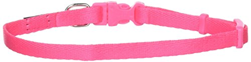 Coastal Pet Products DCP222NPK 5/16-Inch Nylon Pals Dog Collar, X-Small, Neon Pink