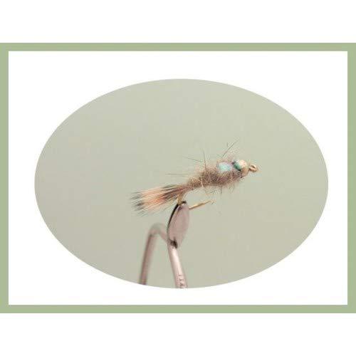 40 St/ück pro Packung gerippt Troutflies UK Mixed Packs Nymphen f/ür Ohren und Fasanenschwanz goldfarben