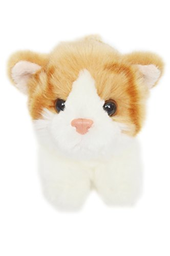 Ginger Snaps Kitten For American Girl Dolls by My Brittany