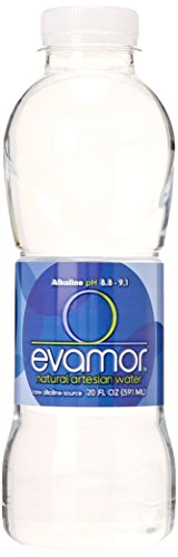 Evamor Natural Artesian Water, 20-Ounce Bottles (Pack of 12)