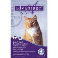 Advantage Purple Cat Medium/Large 4pk 9-18pds, My Pet Supplies