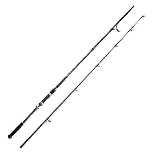 BERRYPRO Surf Spinning Rod Graphite Surf Fishing Rod (9'/10'/10'6''/11'/12'/13'3'') (9'-2pc)