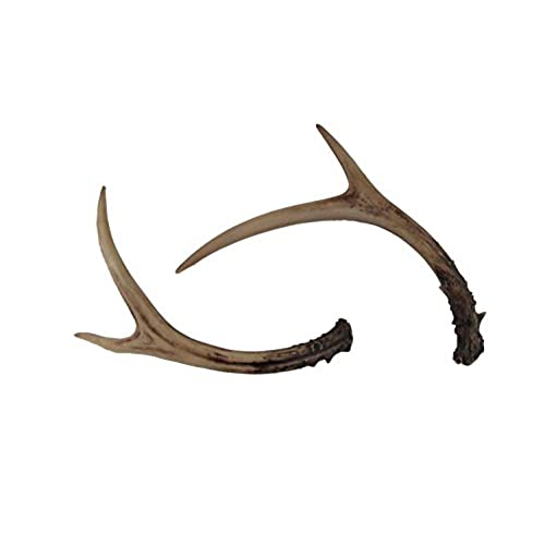 Whitetail Deer Antlers Set (2 Pack) Faux Resin Rustic Home Décor