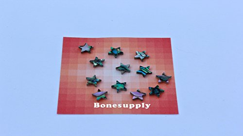 Set of 12pcs green abalone star shell blanks size 8mm premium quality ()