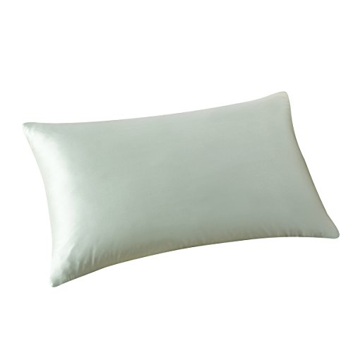 ALASKA BEAR - Natural Silk Pillowcase, Hypoallergenic, 19 Momme, 600 Thread Count 100 Percent Mulberry Silk, Queen Size with Hidden Zipper (1, Mint Green)