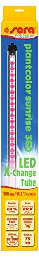 LED Plantcolor Sunrise – plantenlicht voor kleurversterking voor optimale plantengroei., modern, 360 mm / 111 lm / 4,3 W