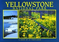 (Yellowstone National Park (ID/MT/WY): A Book of 21 Postcards)