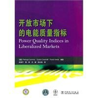 Read Online Open market under the power quality indicators(Chinese Edition) pdf