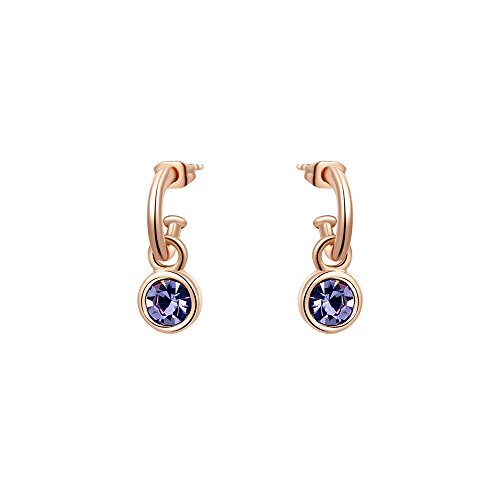 Fashion Rose Vermeil Purple Hue Earrings Jewelry