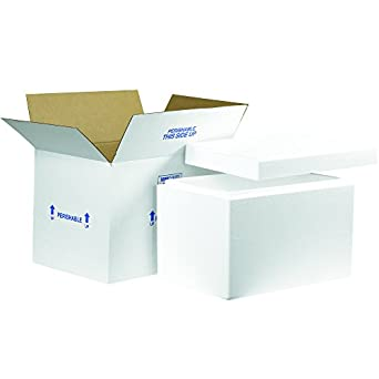 a425357048d0 Amazon.com: Boxes Fast BF261C Insulated Shipping Box with Foam ...