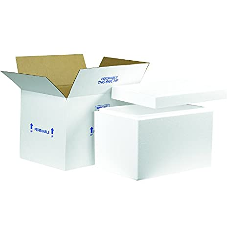 Boxes Fast BF261C - Caja térmica con contenedor de espuma, 48,26 x 30,48 x 30,48 cm, tamaño grande, color blanco: Amazon.es: Amazon.es