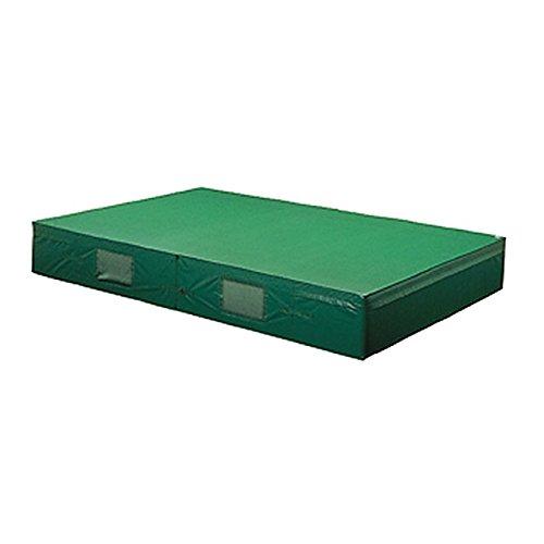 トーエイライト(TOEI LIGHT) 屋内外兼用エバーマット(防水ビニロン帆布)二つ折り200/300/40cm(F)用交換袋 G-2063A B01K1BNF3Q