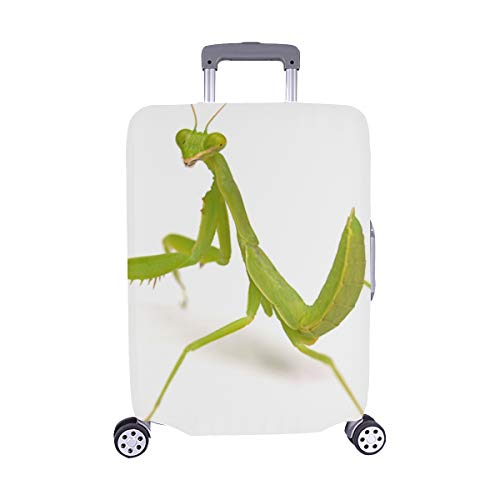 A Wounded Little Mantis Pattern Spandex Trolley Case Travel Luggage Protector Suitcase Cover 28.5 X 20.5 Inch