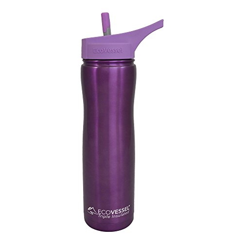 EcoVessel SUMMIT TriMax Triple Insulated Stainless Steel Water Bottle with Flip Straw - 24 Ounces - Purple
