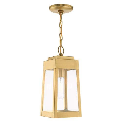 Amazon.com: Livex Lighting 20854-12 Oslo - Lámpara de techo ...