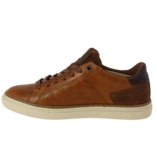 da uomo Marrone Baker Sneakers medio marrone Levi's 27 q8S76wB